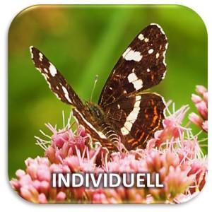 Kachel Individuell